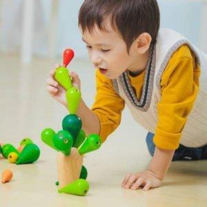 Κάκτος ισορροπίας Plan Toys 4101