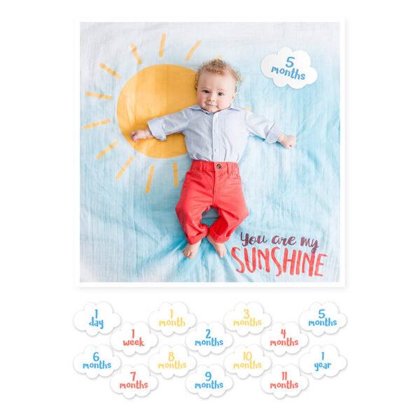 Θεματική μουσελίνα Lulujo you are my sunshine & 7 κάρτες milestone